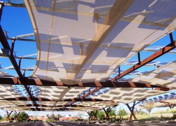 Using a Tensioned Membrane Structure to Optimize Your Solar Panels